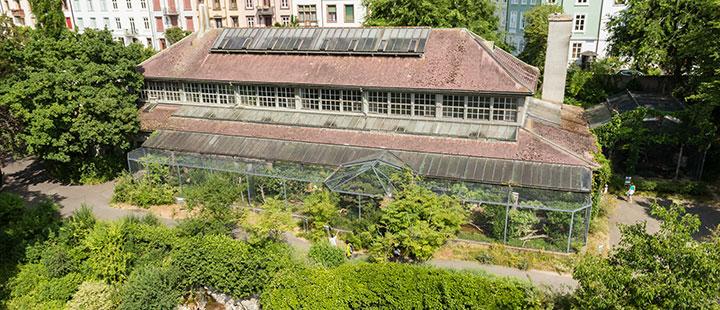 Zoo Basel: Um- und Neubau des Vogelhauses geplant